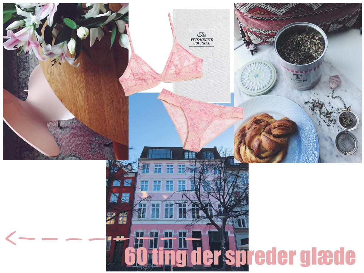 60_ting_der_spreder_glaede