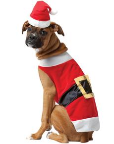 julemand-eller-stor-hund