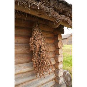 sauna hus