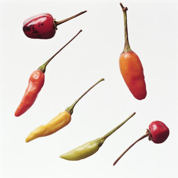 Chili Frugt og Grønt Sanseoplevelser og Sundhe