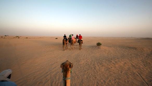 Tunesien_Sahara_oerken_udsigt_fra_kamel