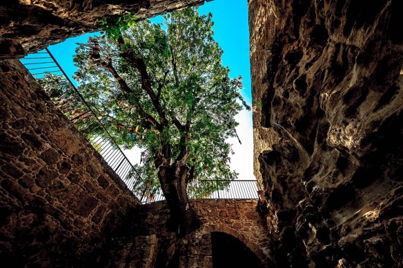 Cyprus_Pafos_Agia_Solomoni Catacomb_photo_Henrik_Elstrup