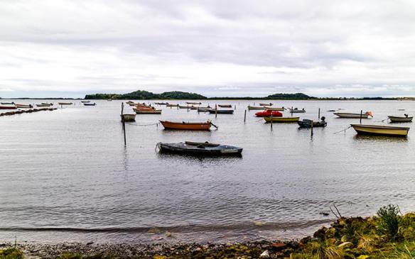 Samsø_w_IMG_2533-10