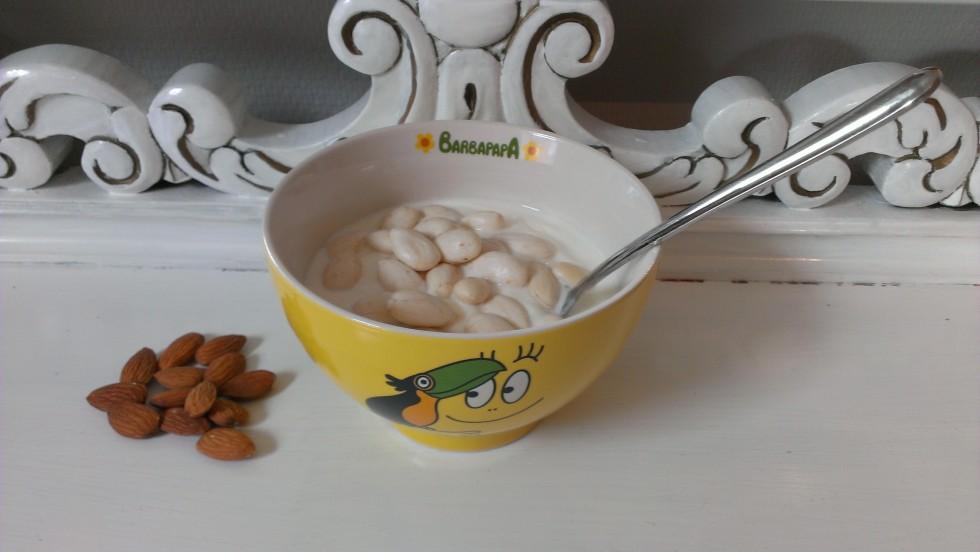 Morgenmad bestående af Græsk youghurt og en håndfuld smuttede mandler. Skeen er fra Villeroy & Boch og skålen er en jeg har købt i Netto til 20 kr med Barbapapa motiv ;)
