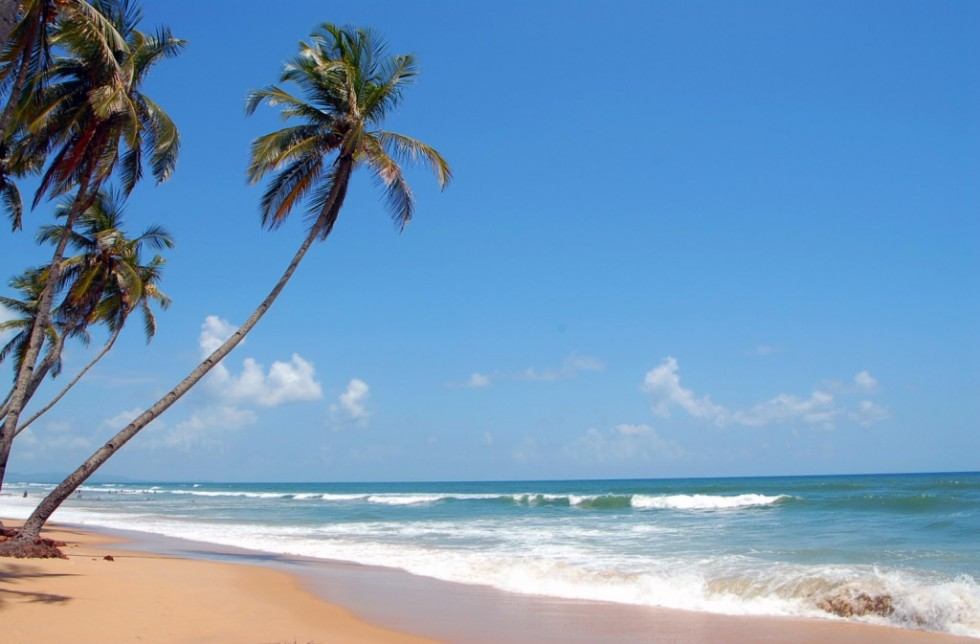 colva-beach-goa-1024x673