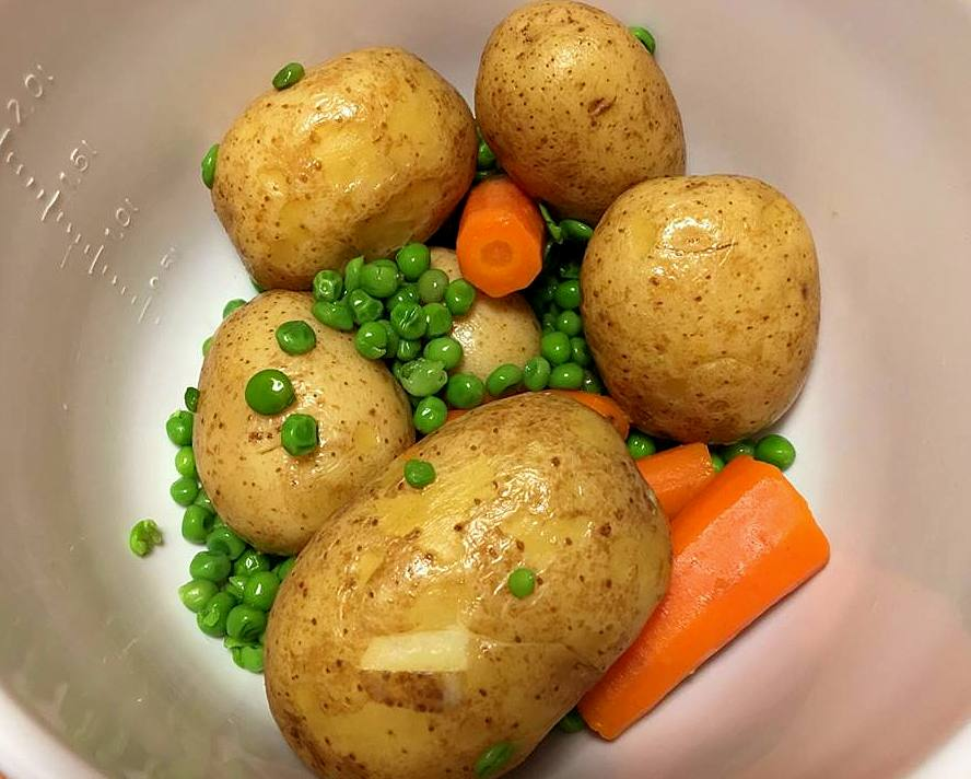 kogte-groentsager-mv