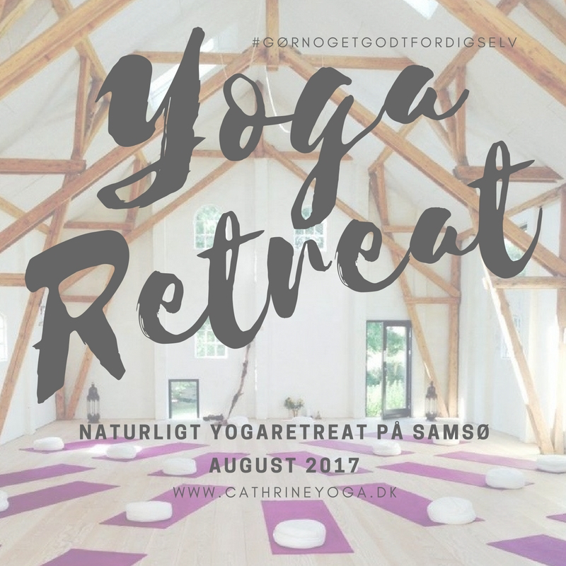 naturligt-yogaretreat-paa-samsoe-august-2017-13