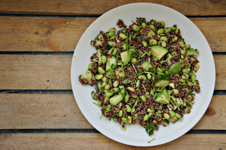 avokadosalat-med-sort-quinoa-opskrift-cathrineyoga-dk