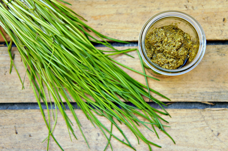 opskrift-hjemmelavet-groen-pesto-cathrineyoga-dk-1