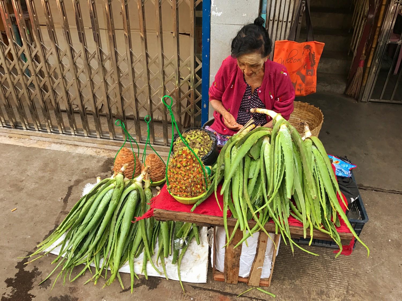myanmar-yangon-og-mandalay-cathrineyoga-dk-1-1
