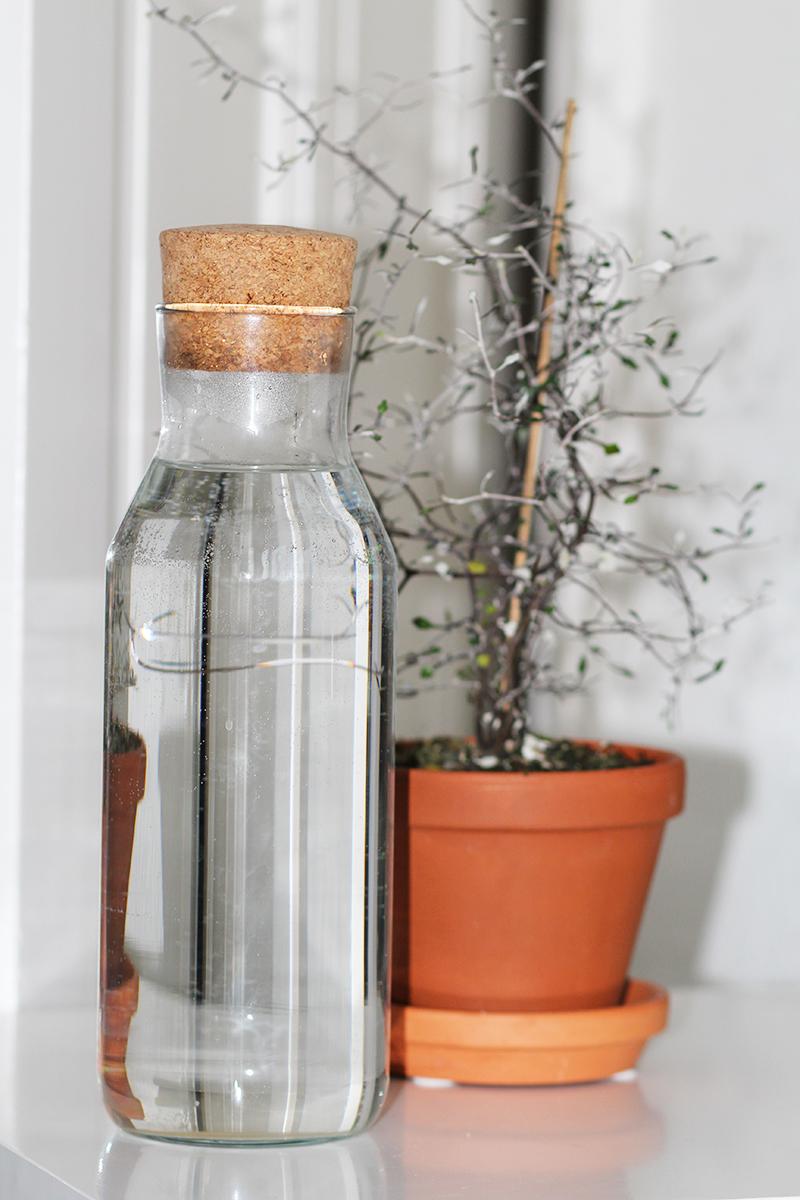 blive bedre til jeg vil gerne blive bedre til at tage imod komplimenter og ros Longo Vital drikke vand 12-tal Amy Dyrholm blog blogger Pippi Langstrømpe Sej