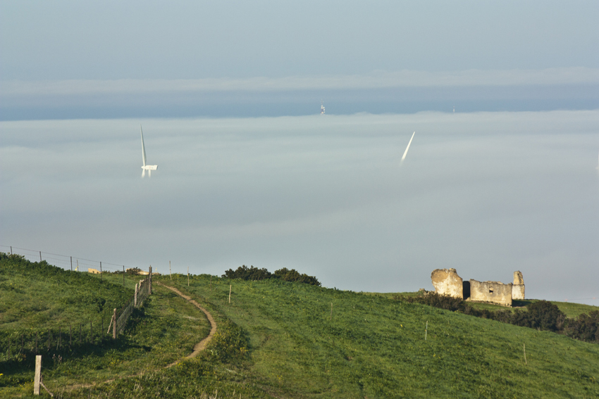 windmills in the mist 2
