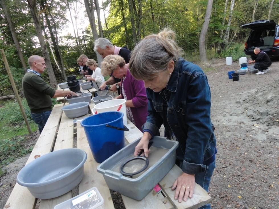 Fossilvaskning i Vattenriket ved Kristianstad