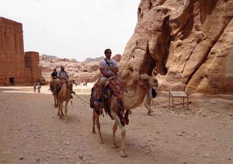 Kameler i Petra