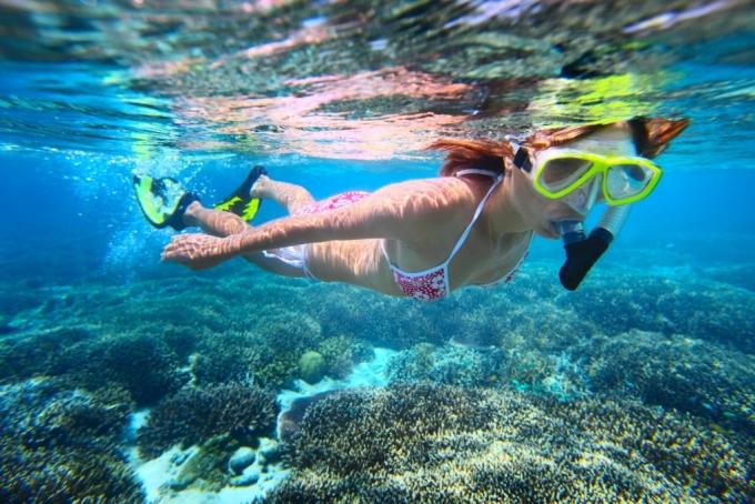 Krydstogtsferie, hvor man kan dykke
