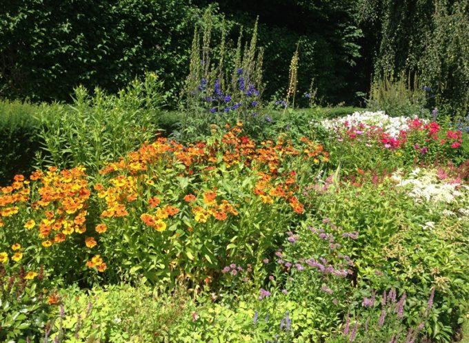 Blomsterbed på Solliden Sommerslott