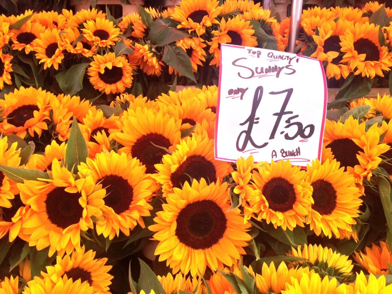 Solsikker på Columbia Road Flower Market. Foto: Karen Seneca
