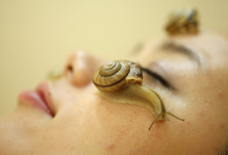snails_crawl_on_the_face_of_a_woman_during_a_demon_51e9b04109