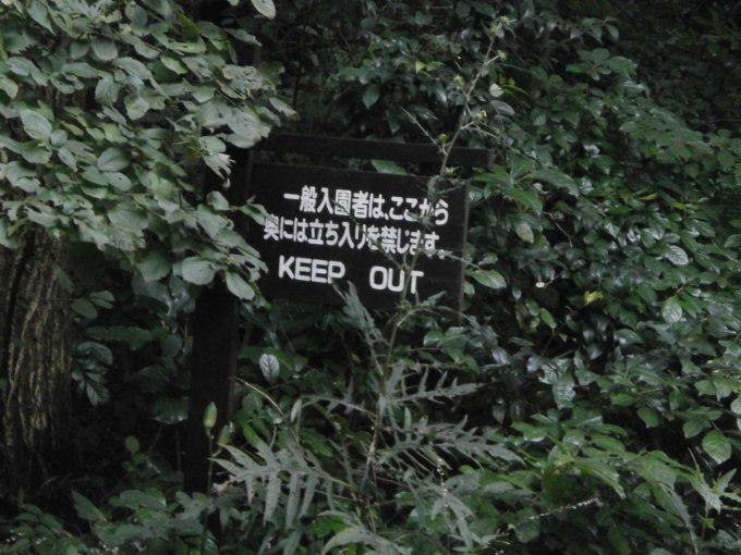 Japan 2 605