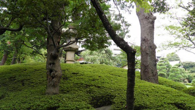 tokyo-2017-6-234