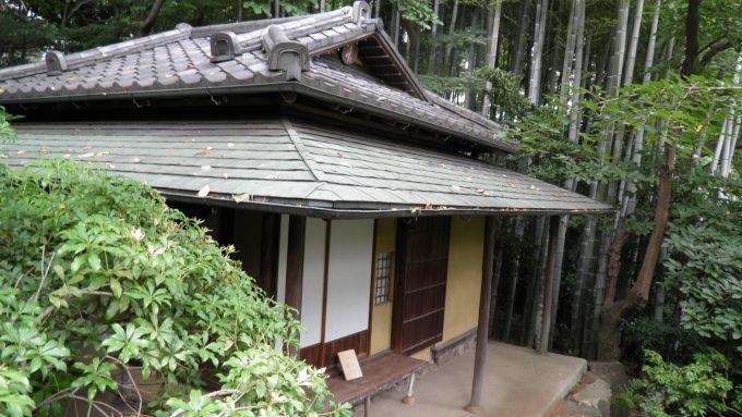 tokyo-2017-6-255