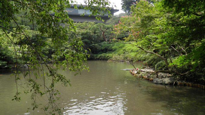 tokyo-2017-6-273