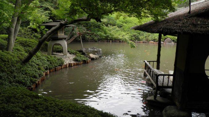 tokyo-2017-6-293