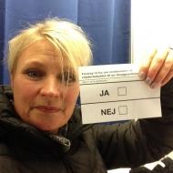 d. 3 dec. stemmeseddel