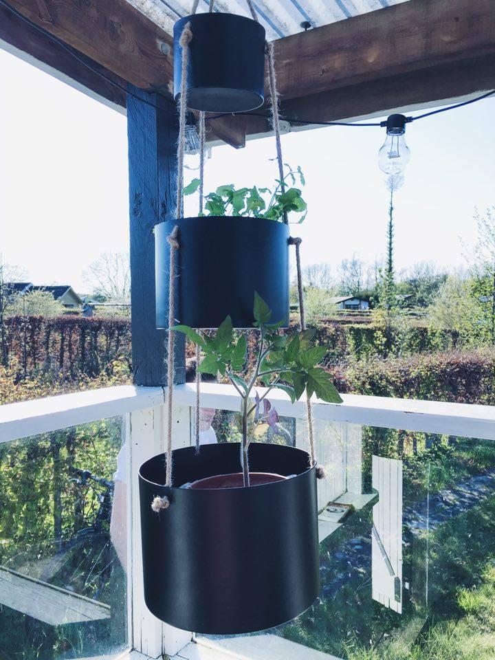 hængende planter terrasse