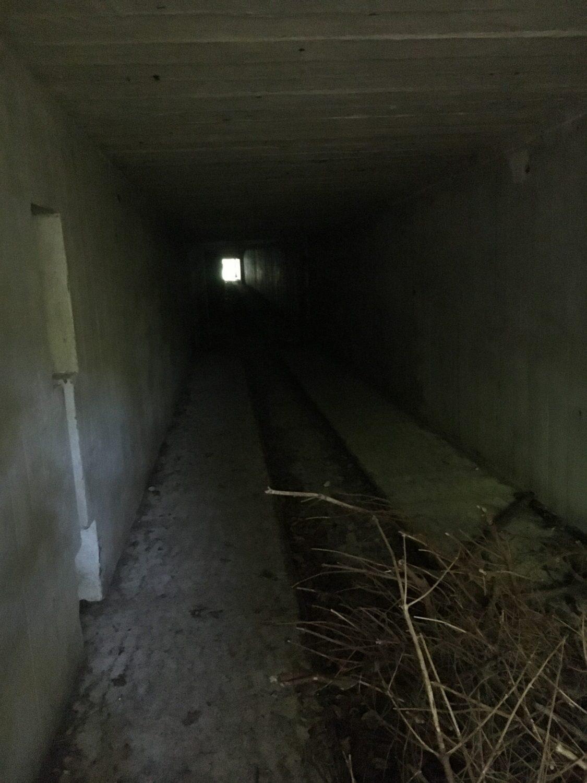 Vi er på opdagelse efter den bunker, som Theis havde lavet brandøvelse i