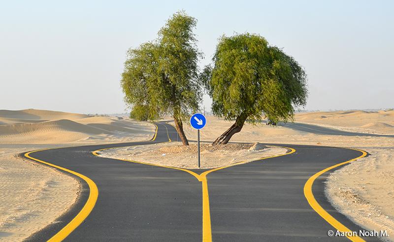 Al_Qudra_Cycle_Path_Main