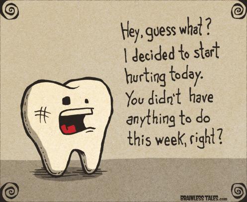 toothache-harhar