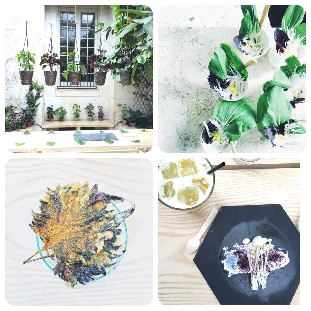 billetnet shiso datenight asiatisk plante østerbro