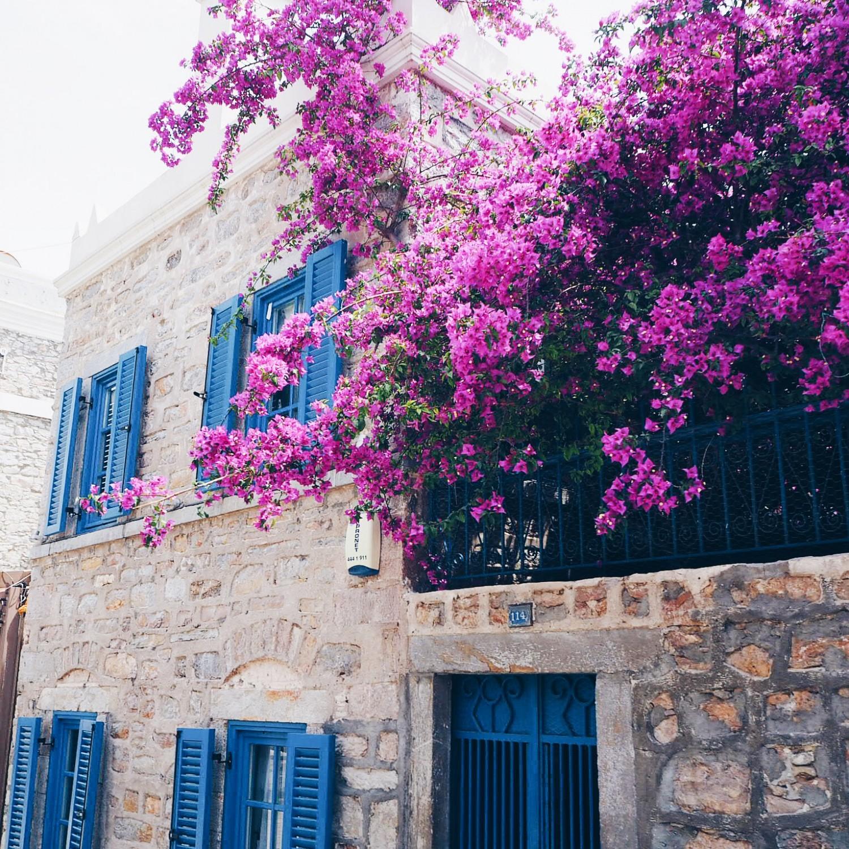 grækenland året der gik rejse stress nelle noell
