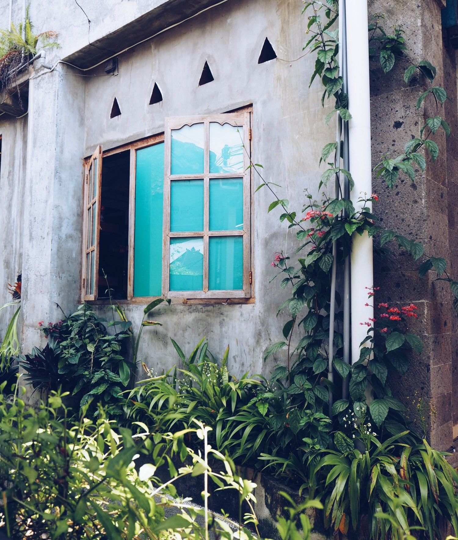Bali Satu ubud