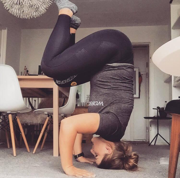 trinetheodora-hovedstand-step-fitness-3