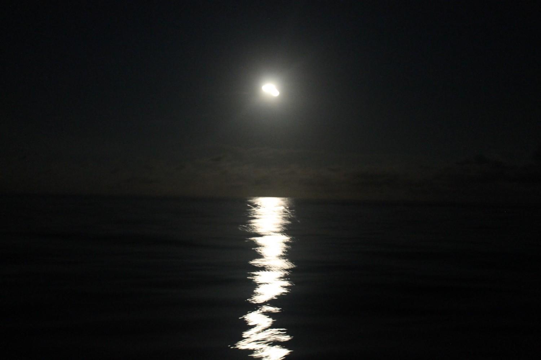 Måneskin i natten