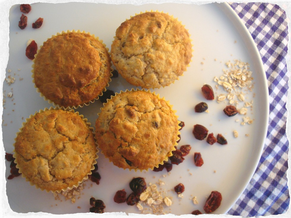 Oatmeal Cranberry muffins homemade