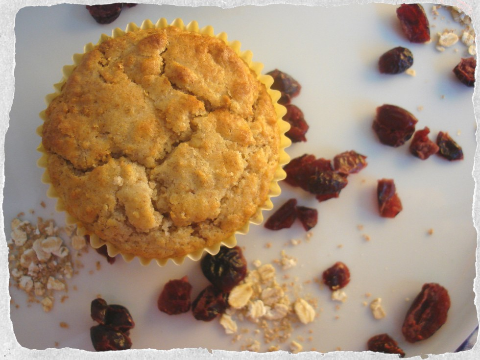 Oatmeal muffins with dried cranberries