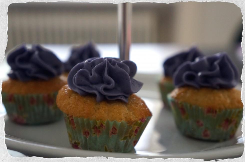 Mini vanilla cupcakes with licorice frosting