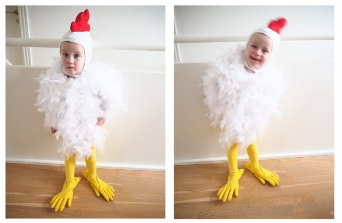 kylling-1