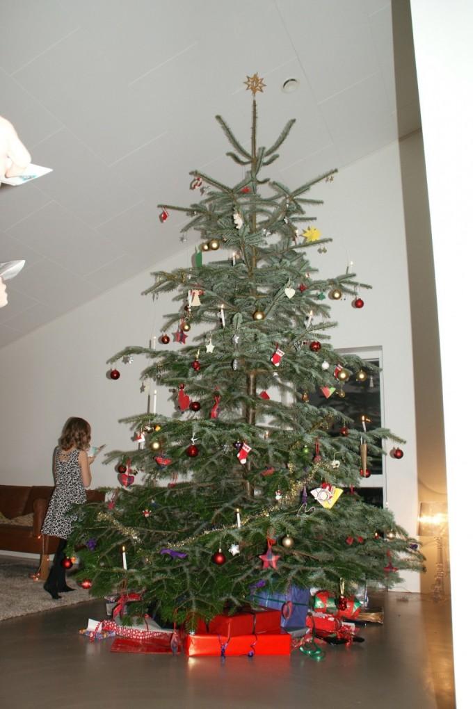 Juletræet med sin pynt!