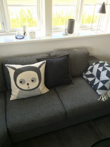 Cushion 7