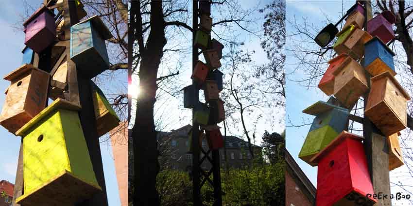 urban gardening birdcases