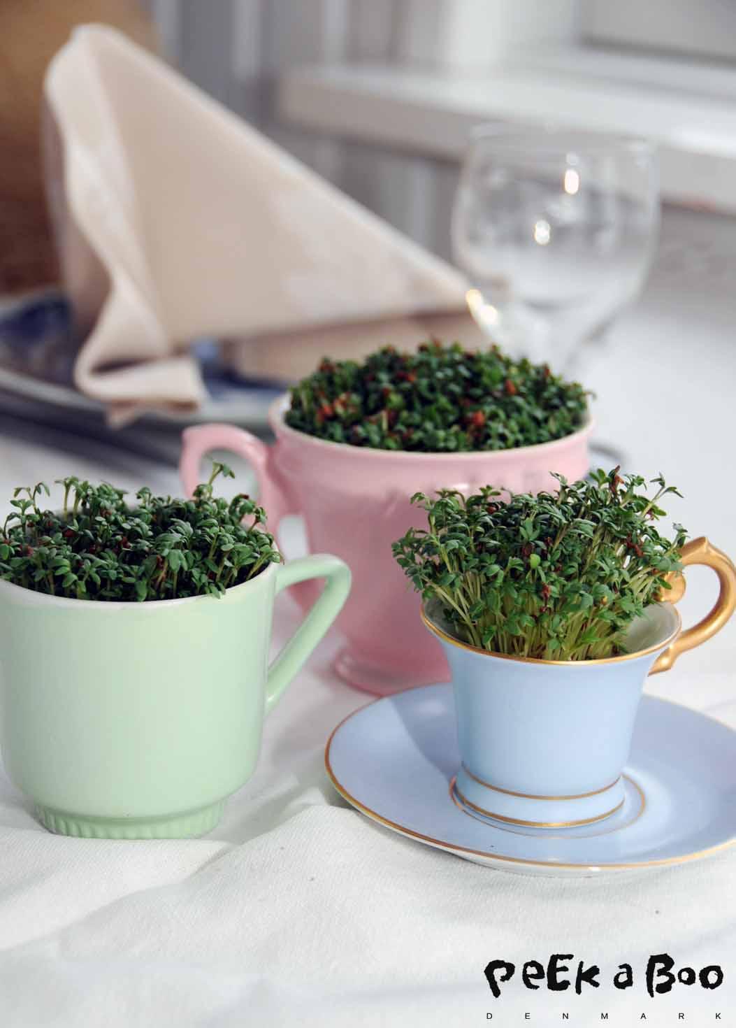 Karse til frokostbordet...så i forskellige størrelser pastelfarvede kopper...