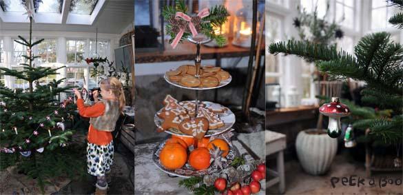 Jul i drivhuset 2012.