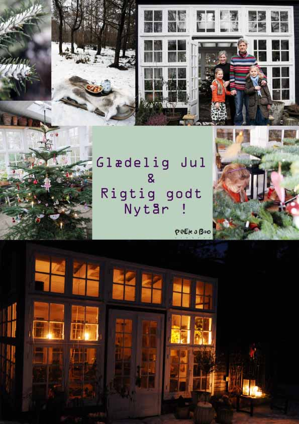 Last Christmas....in the greenhouse...I loved it...hope for snow again.