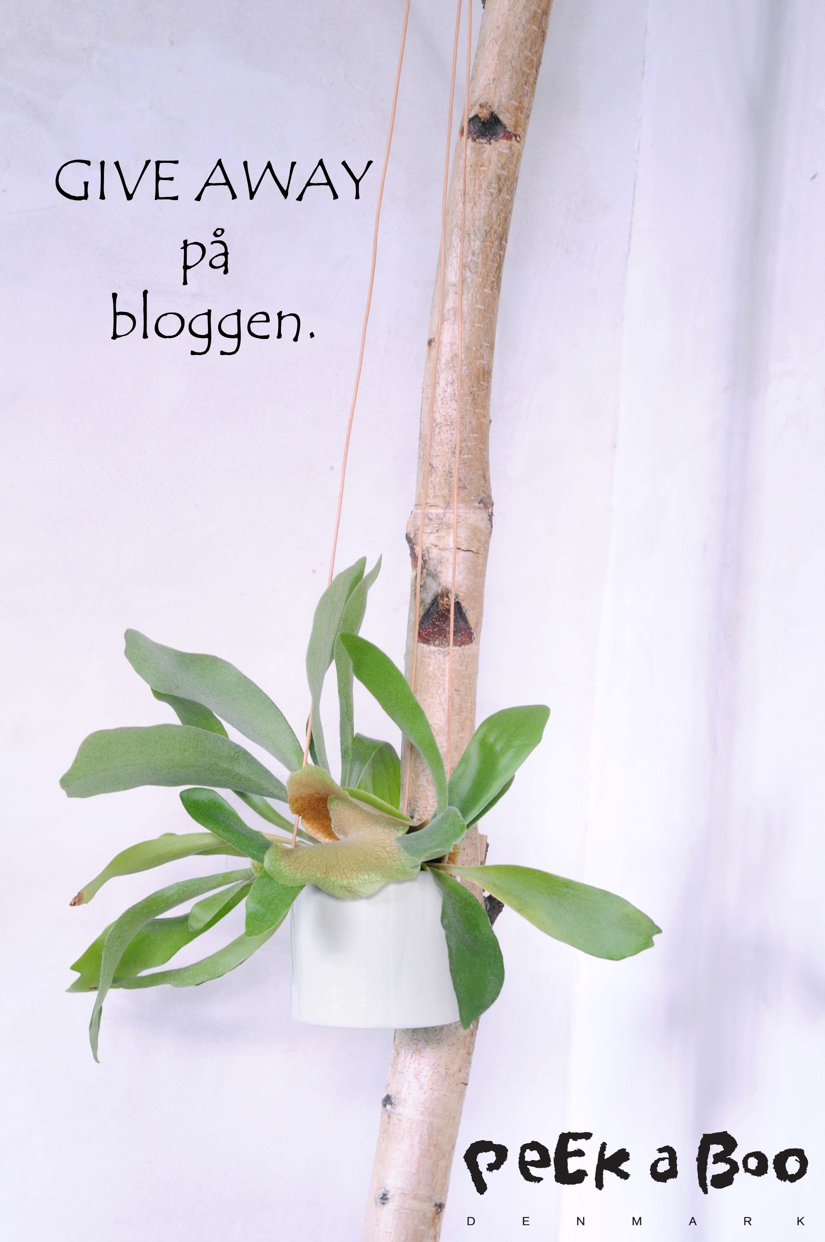 """Give Away på bloggen. Fin """"grow"""" ampel fra Anne Black på højkant."""