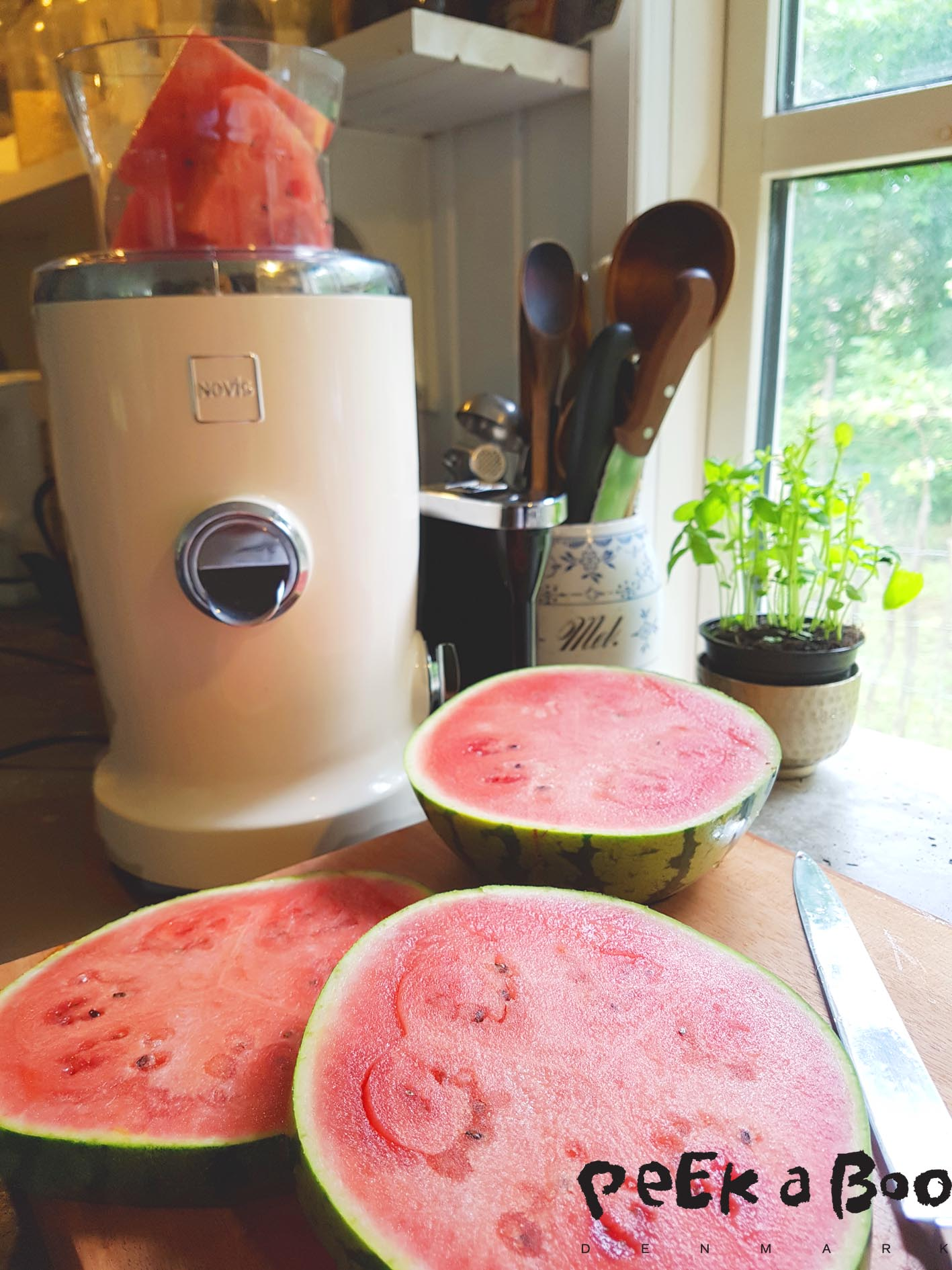 Watermelon juice made on the Novis Vita Juicer.