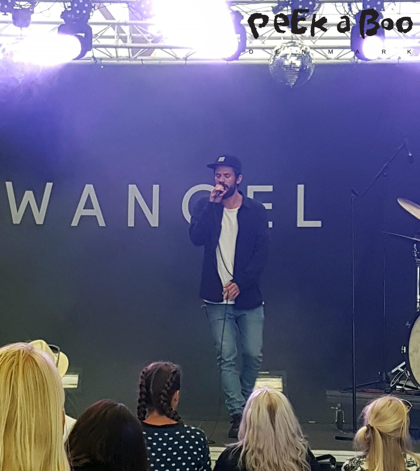 Wangel at Vig festival 2016